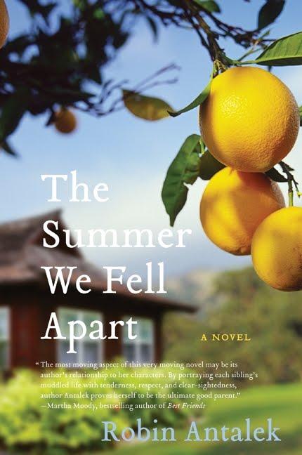 Summer-we-fell-apart-768745