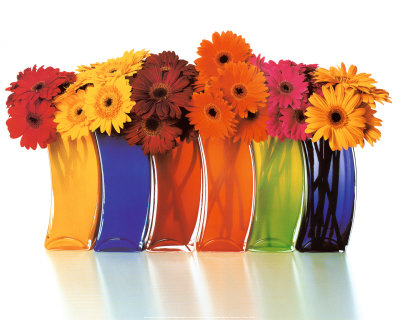 Image-Cache6-vases