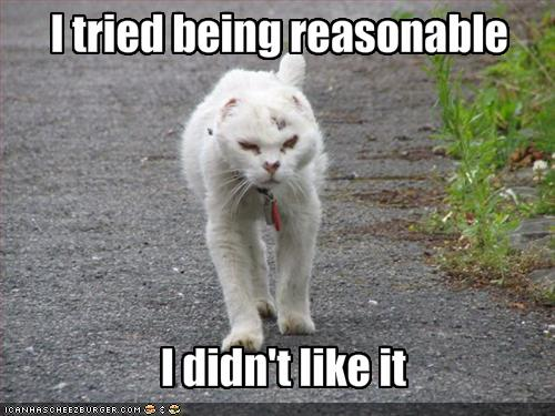 Funny-pictures-cat-does-not-like-being-reasonable