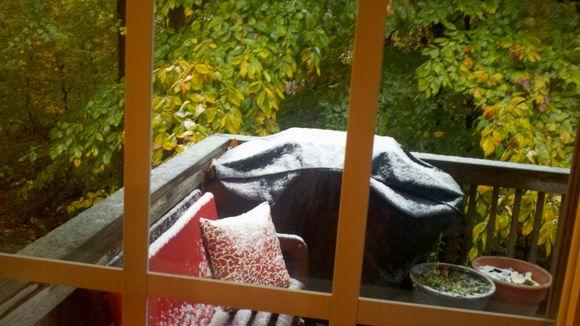 2011-10-29_08-24-50_220.jpg