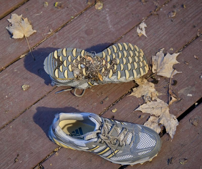 Poop shoes