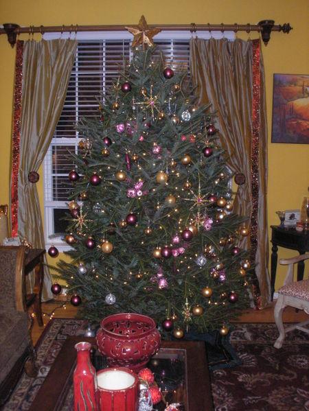 Christmas_2006_024
