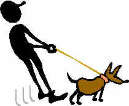 Dog20walker