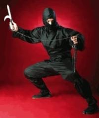 Ninjapictred_1